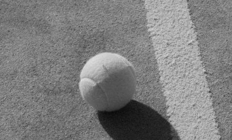 pelota de padel. Especificaciones y características