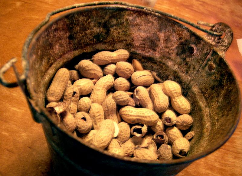 Un cubo de cacahuetes no es un cesto de pelotas de padel